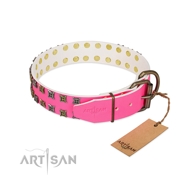 Leather collar with unique embellishments for your canine