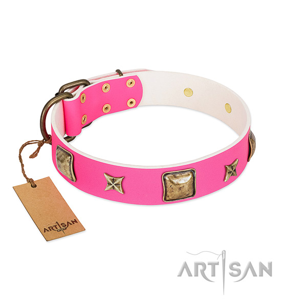 Leather dog collar of gentle to touch material with incredible embellishments