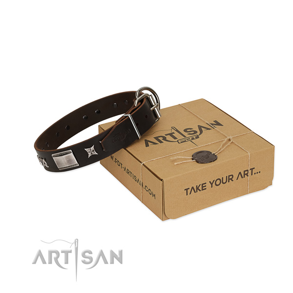 Decorated collar of full grain genuine leather for your handsome pet