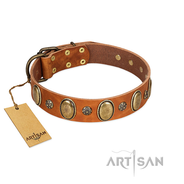 Fancy walking best quality genuine leather dog collar with studs