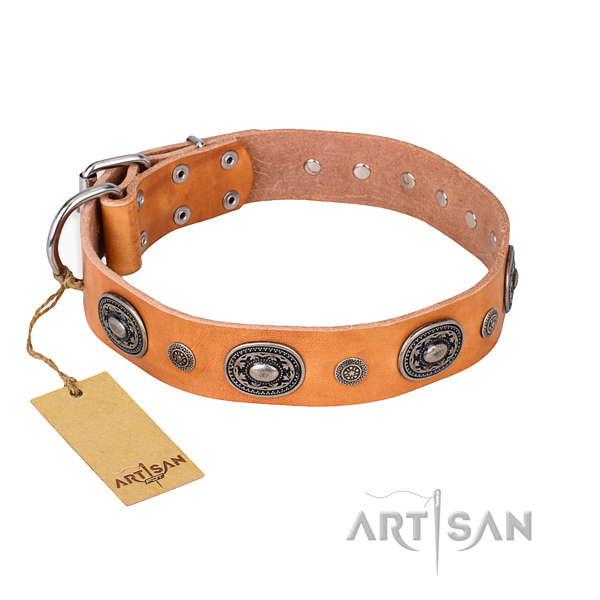 Reliable leather collar crafted for your pet