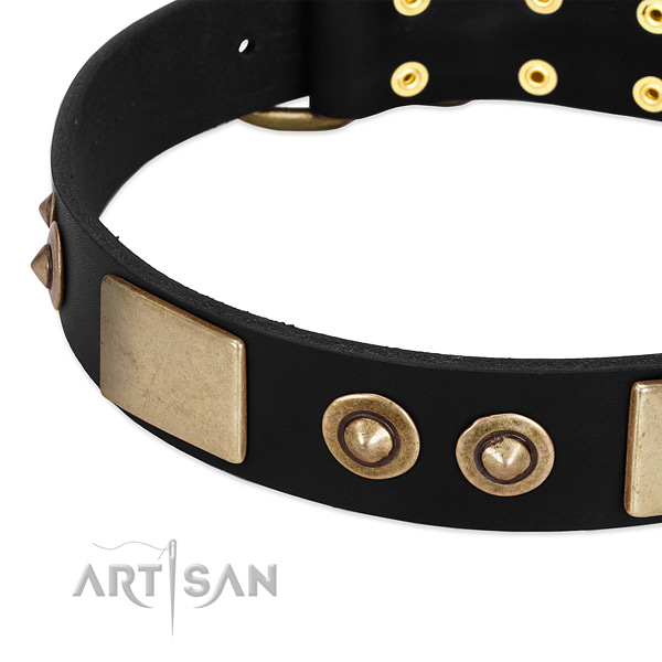 Corrosion proof embellishments on full grain leather dog collar for your pet
