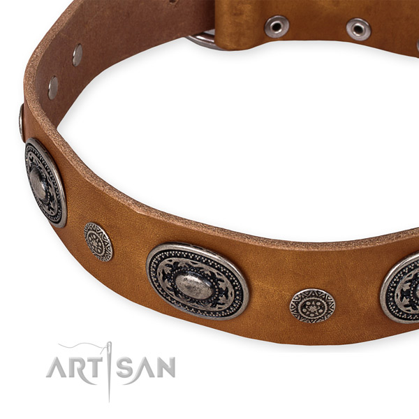 Top notch full grain genuine leather dog collar created for your stylish doggie