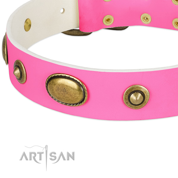Corrosion proof decorations on full grain leather dog collar for your four-legged friend
