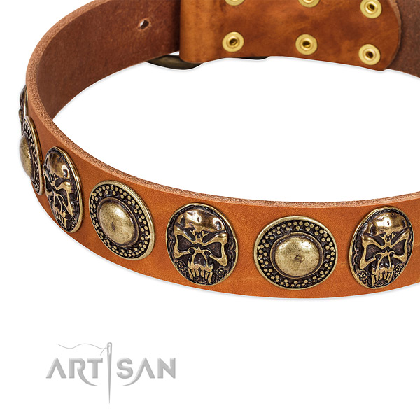 Strong fittings on full grain natural leather dog collar for your doggie
