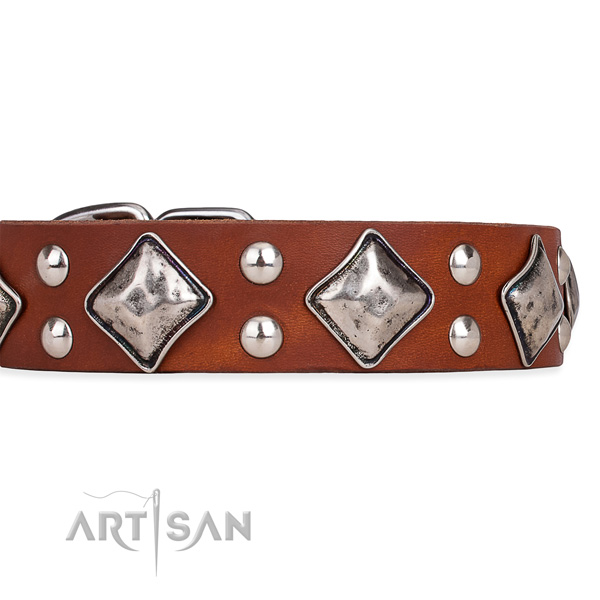 Full grain natural leather dog collar with unusual rust resistant embellishments