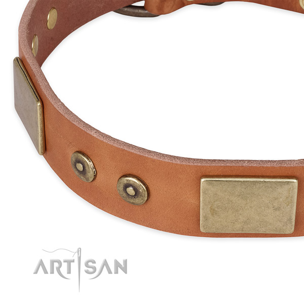 Strong hardware on leather dog collar for your doggie