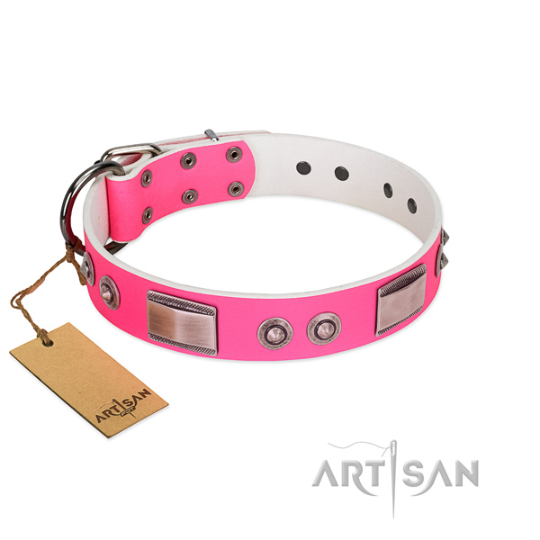 Extraordinary full grain leather collar with embellishments for your canine