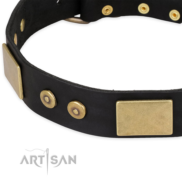 Durable traditional buckle on leather dog collar for your dog