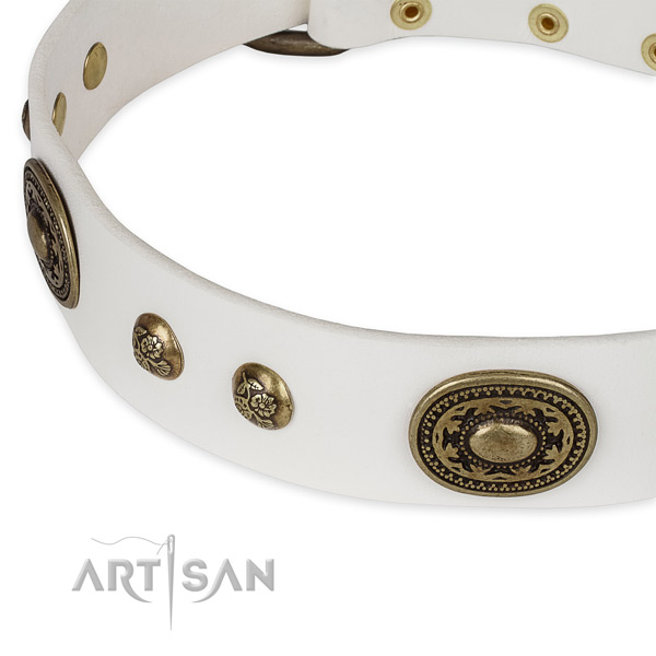 Embellished leather collar for your stylish doggie