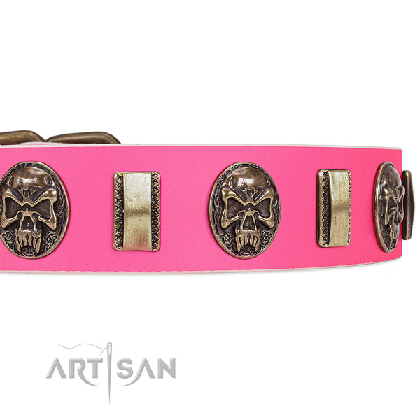 Rust-proof adornments on leather dog collar for your doggie