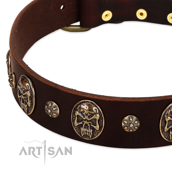 Strong embellishments on full grain natural leather dog collar for your canine