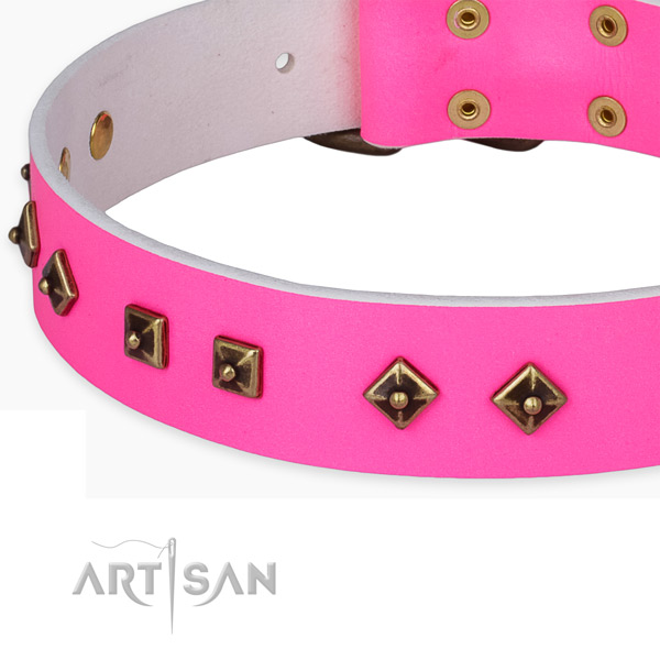 Embellished full grain natural leather collar for your attractive dog