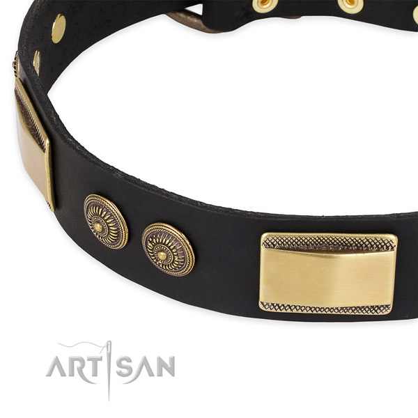 Easy wearing full grain leather collar for your stylish pet