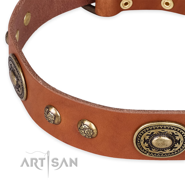 Best quality leather collar for your handsome dog
