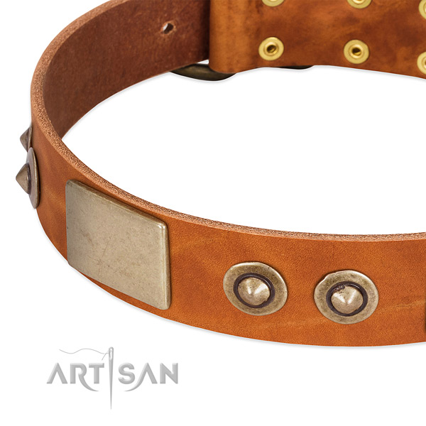 Strong decorations on full grain genuine leather dog collar for your pet