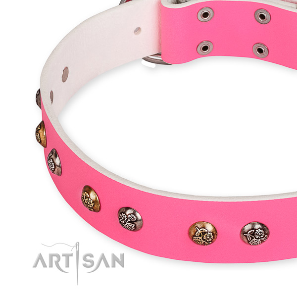 Natural leather dog collar with designer corrosion resistant embellishments