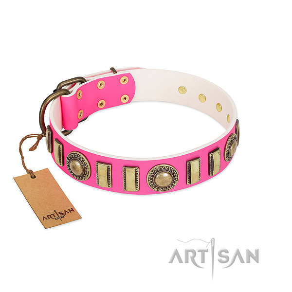Adorned natural leather dog collar with reliable fittings