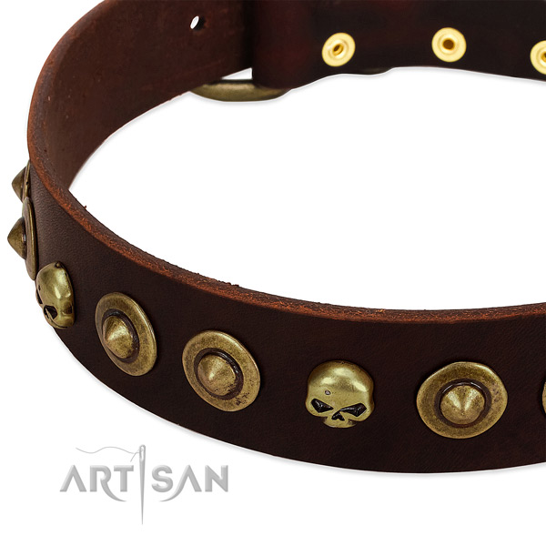 Significant studs on full grain genuine leather collar for your dog