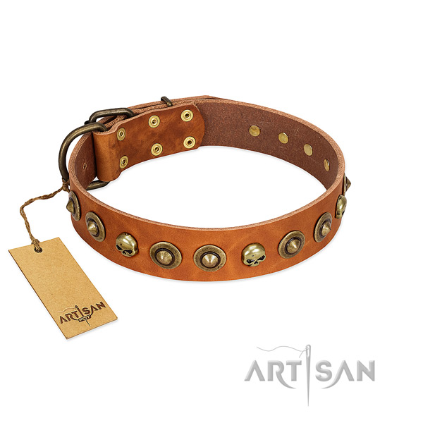 Full grain leather collar with incredible decorations for your pet