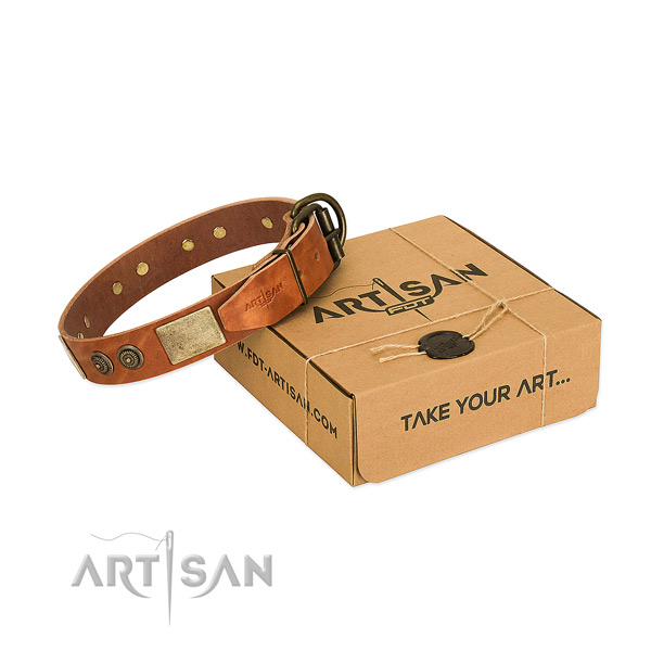 Reliable D-ring on full grain leather dog collar for daily walking