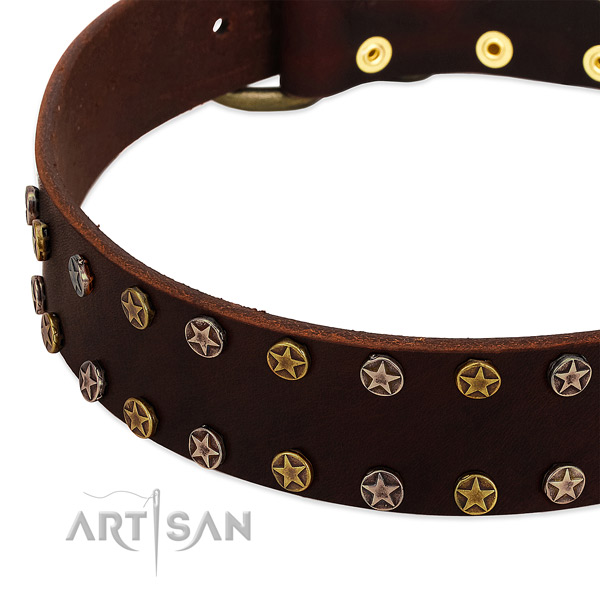Fancy walking full grain genuine leather dog collar with stylish design studs