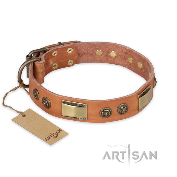 Decorated full grain leather dog collar for comfortable wearing
