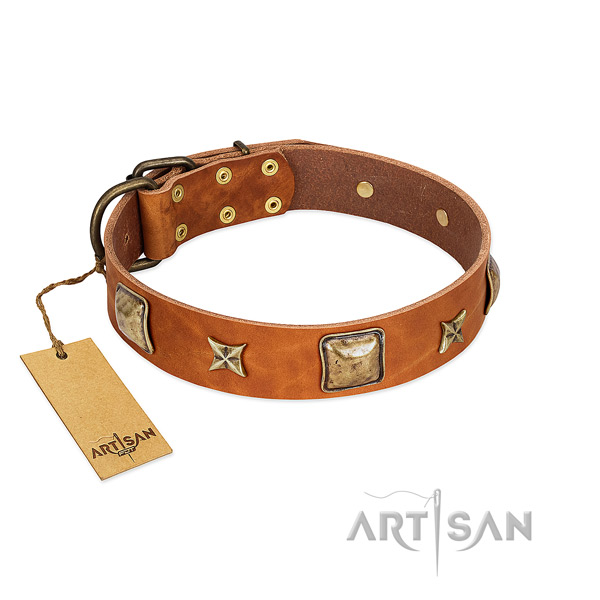 Extraordinary natural genuine leather collar for your doggie