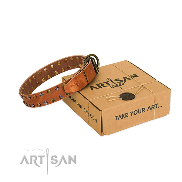 Comfy wearing soft leather dog collar with adornments