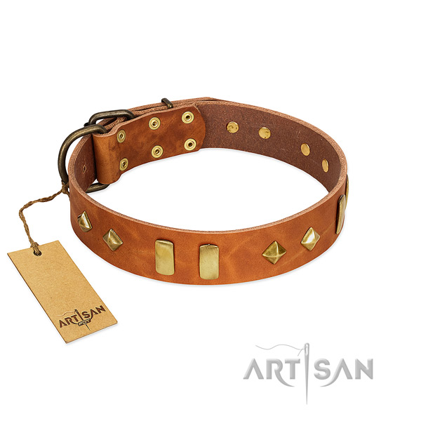 Comfortable wearing quality leather dog collar with adornments