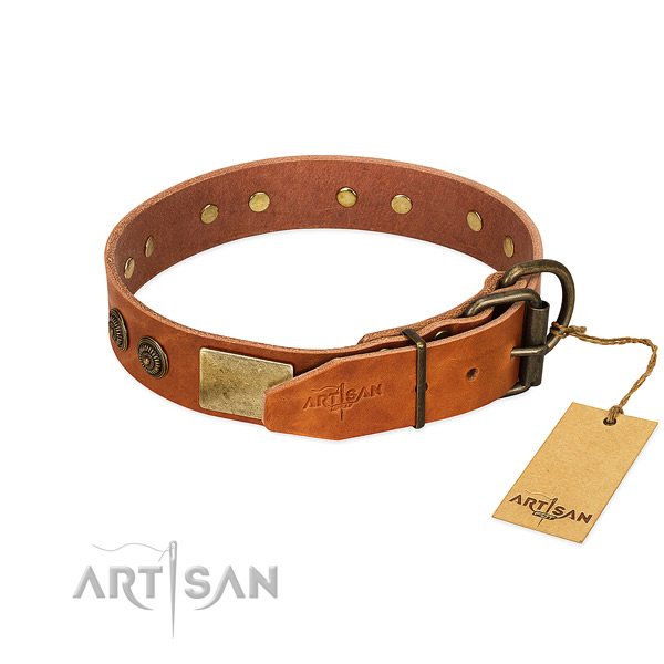Strong D-ring on full grain genuine leather collar for basic training your dog