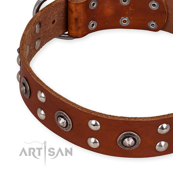 Genuine leather collar with reliable buckle for your lovely four-legged friend