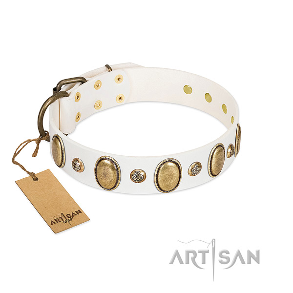 Full grain leather dog collar of high quality material with designer studs
