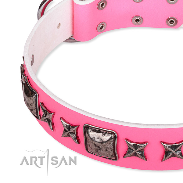 Stylish walking decorated dog collar of strong full grain leather