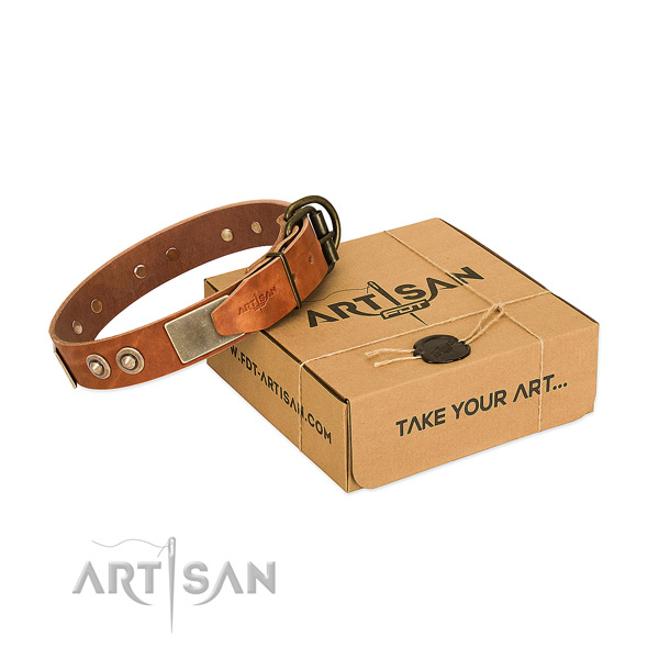 Rust resistant buckle on dog collar for daily use
