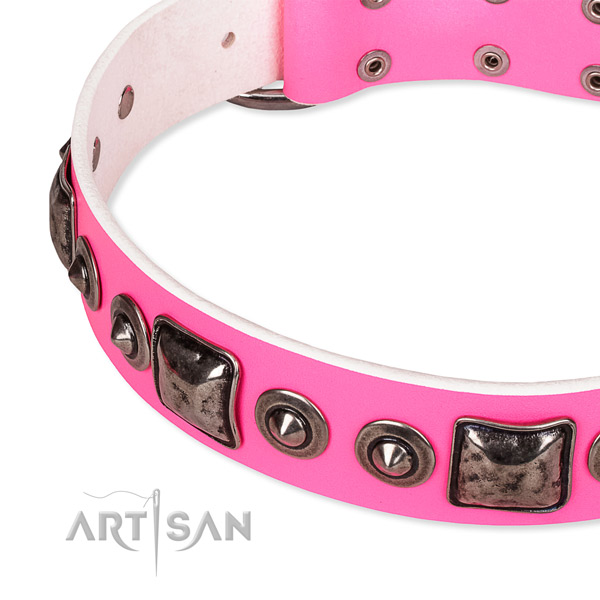 High quality full grain natural leather dog collar created for your handsome canine