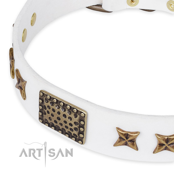 Full grain genuine leather collar with rust resistant fittings for your attractive pet