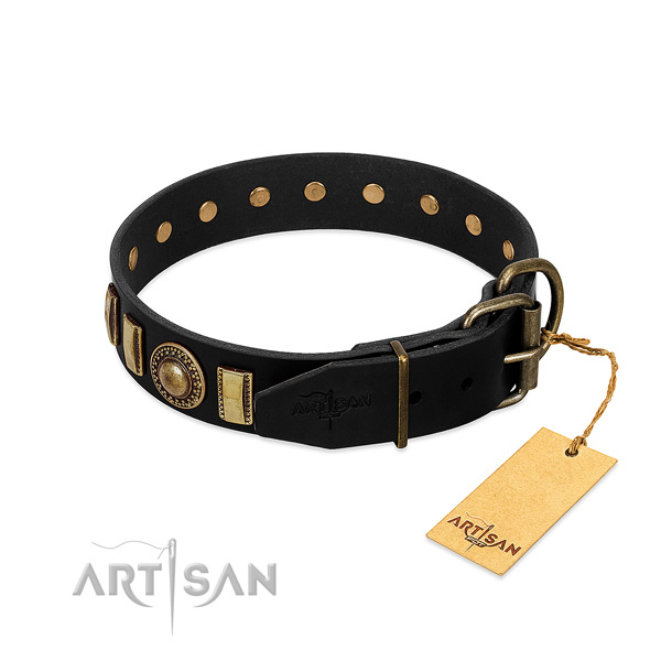 Quality natural leather dog collar with embellishments