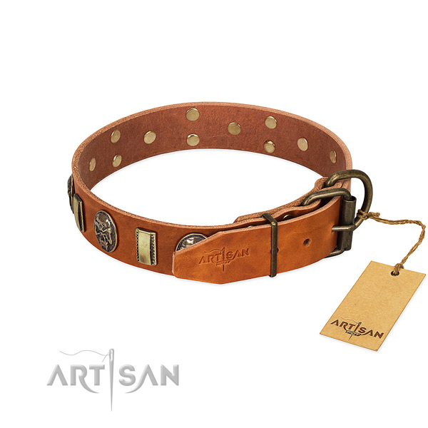 Genuine leather dog collar with durable hardware and embellishments