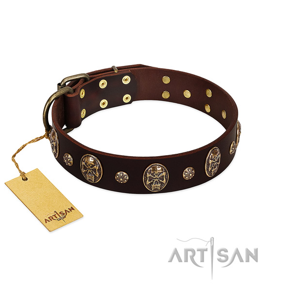 Remarkable full grain genuine leather collar for your four-legged friend