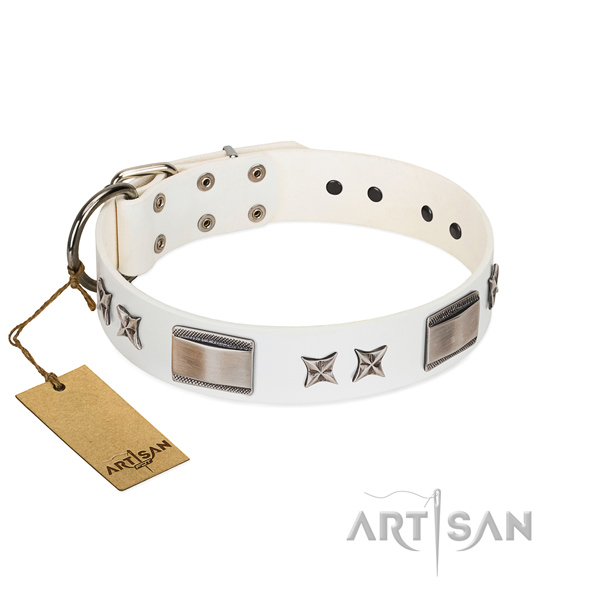 Awesome dog collar of leather