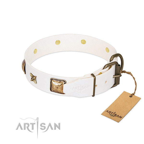 Genuine leather dog collar with corrosion proof hardware and studs