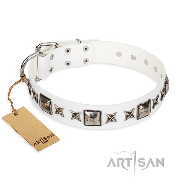 Full grain genuine leather dog collar made of gentle to touch material with durable fittings