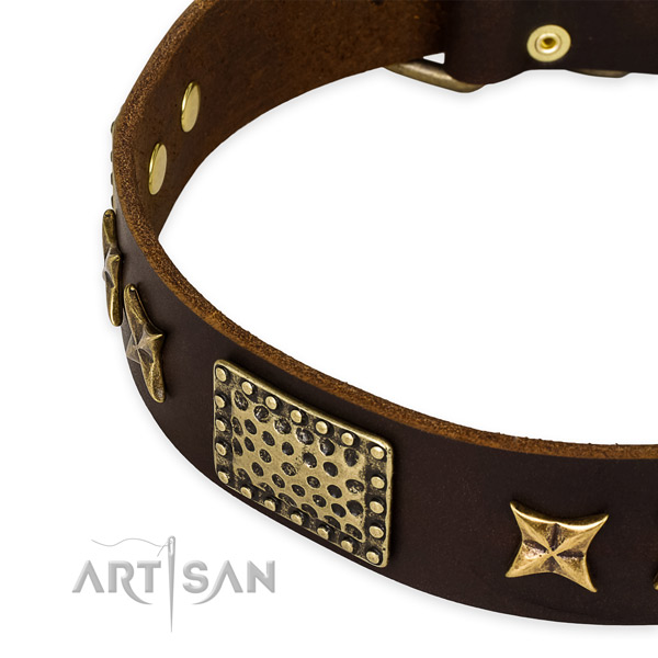 Genuine leather collar with rust-proof D-ring for your beautiful dog