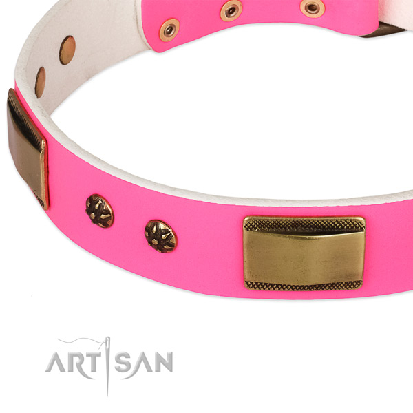 Corrosion proof embellishments on leather dog collar for your dog