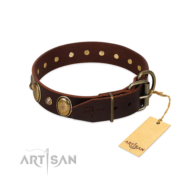 Rust-proof buckle on natural genuine leather collar for basic training your canine