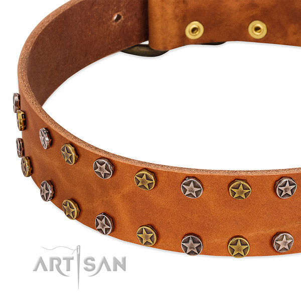 Daily use natural leather dog collar with unusual adornments