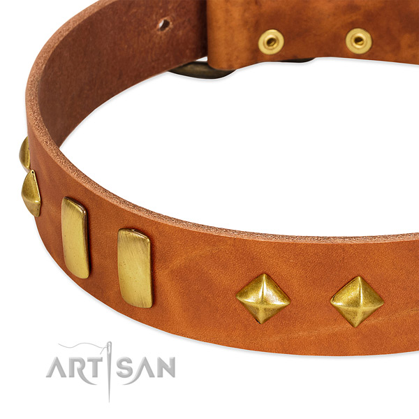 Easy wearing full grain leather dog collar with designer decorations