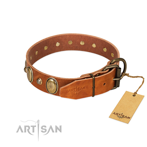 Incredible genuine leather dog collar with strong hardware