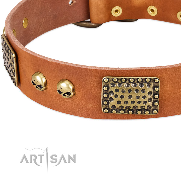 Corrosion proof decorations on full grain natural leather dog collar for your dog